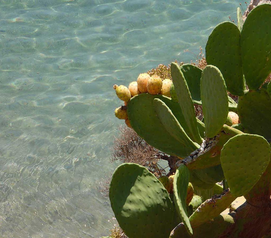 isola di kythira