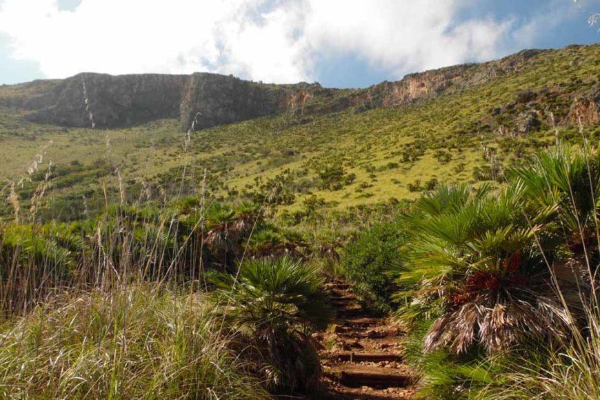Parco della Riserva dello Zingaro