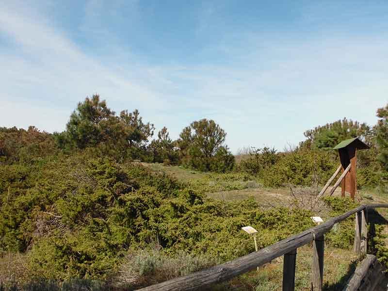 percorso oasi porto caleri